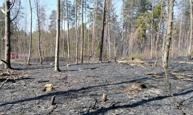 fot. OSP Cewków