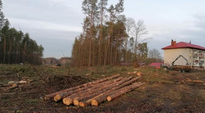 Zdjęcie z grudnia, fot. Grzegorz Dominik