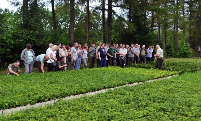 Delegacja RDLP w Lublinie w Szkółce Leśnej Kolonia fot. Nadleśnictwo Oleszyce