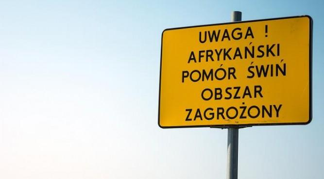 fot. pozezdrze.pl