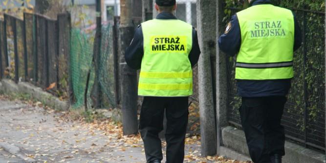 fot. nj24.pl